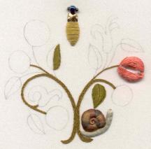 Pomegranates and Beetle by Jane Nicholas