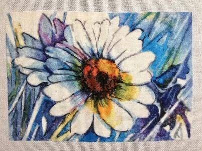 Daisy Blue by HAED